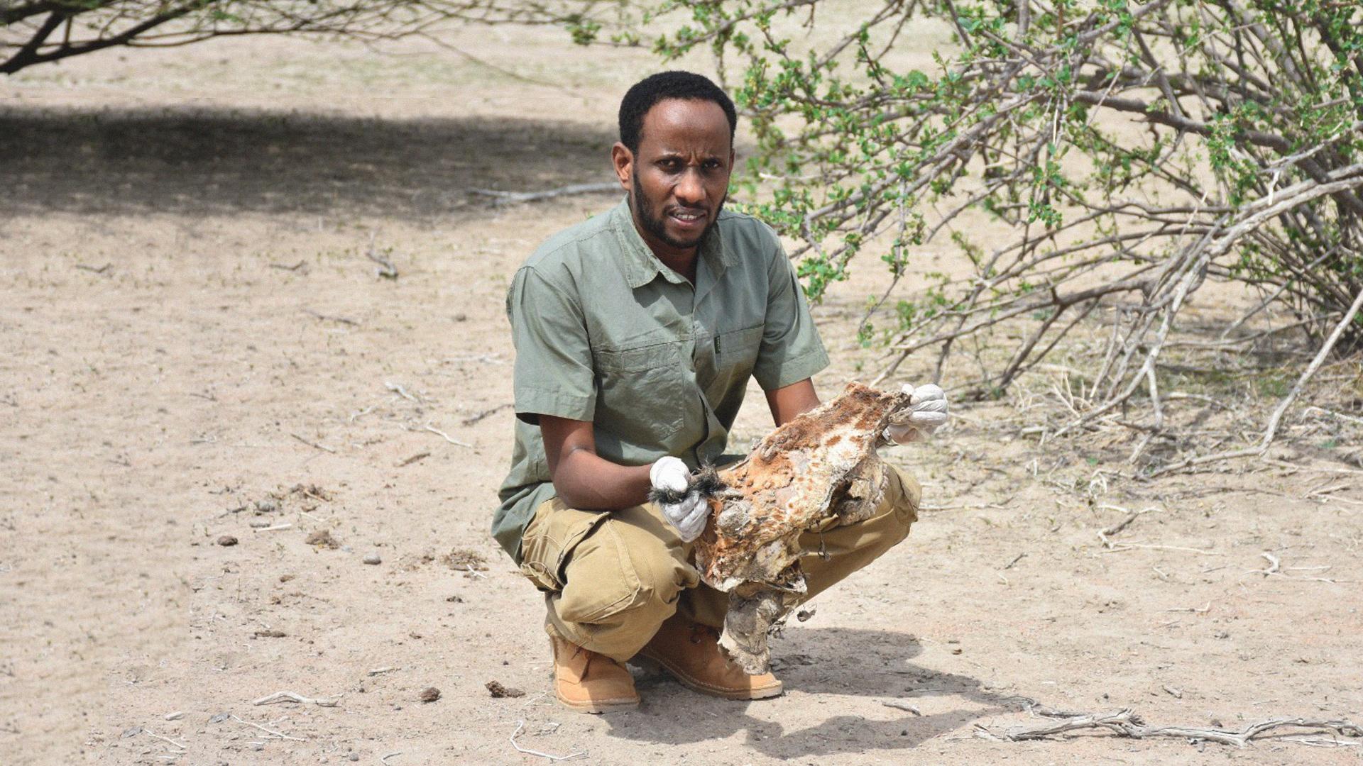 Ali Abdullahi Fighting for **endangered** species