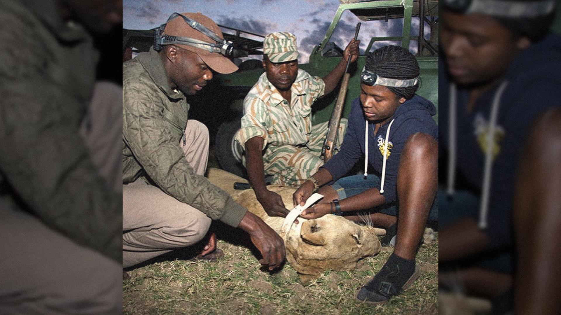 Thandiwe Mweetwa Saving Zambia's **last lions**