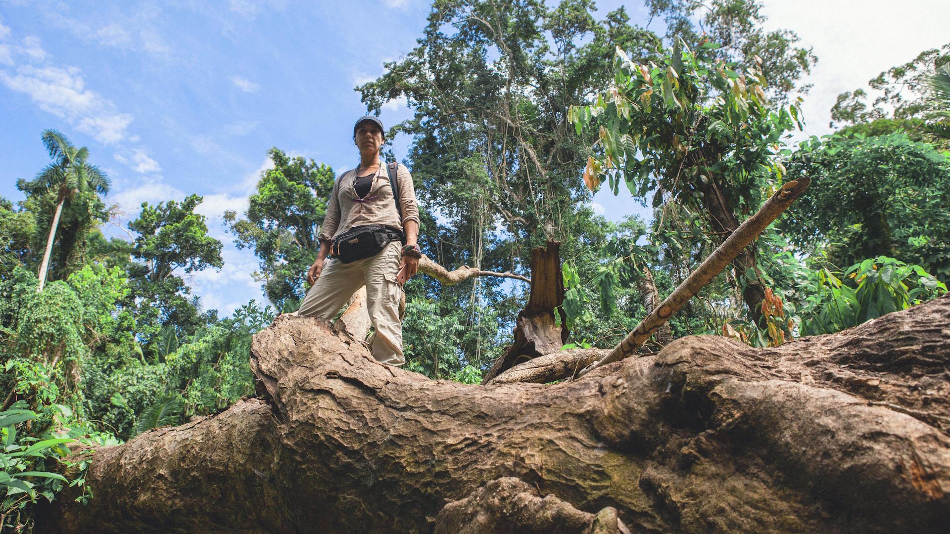 Tatiana Espinosa **Protecting** the Amazon **rainforest**